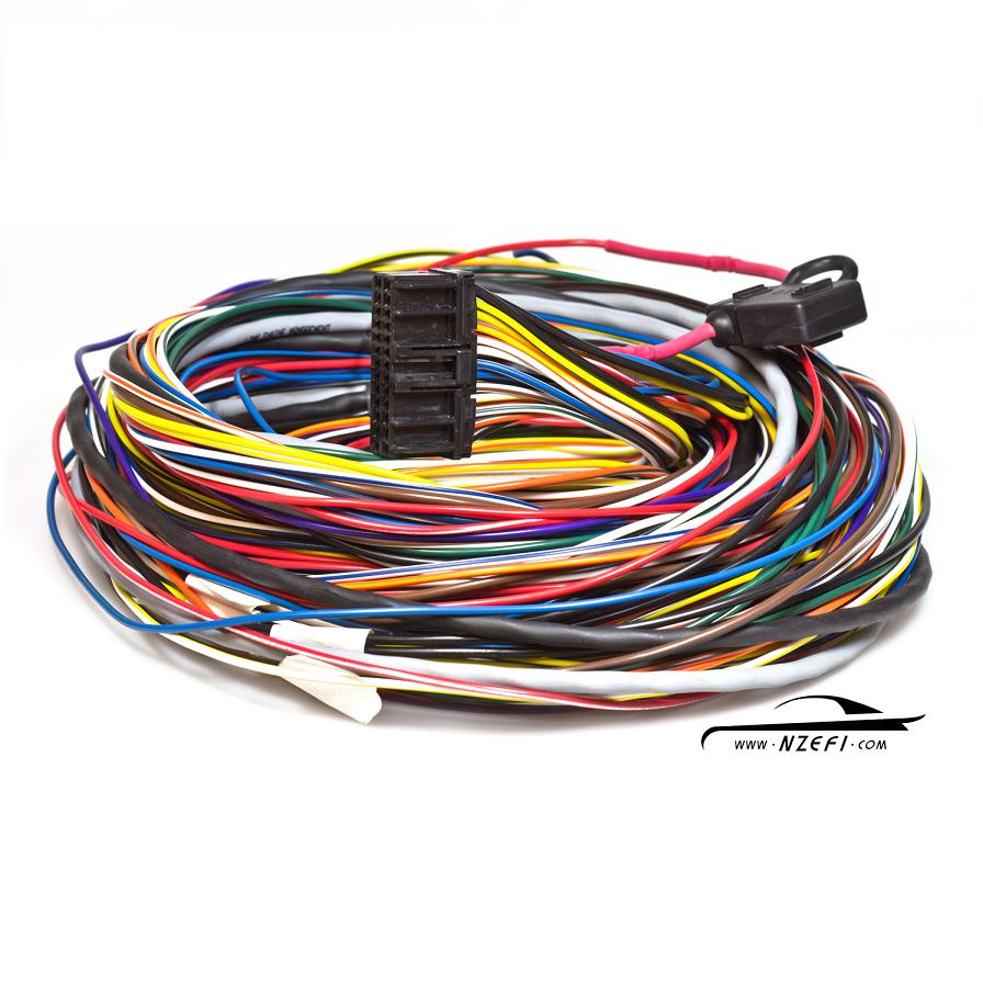 Link-LEM-G3-2.0m-Wiring-Loom Wiring Looms on