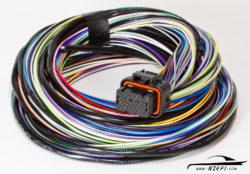 Link G4 G4+ Loom B 2.5m Wiring Loom