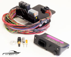 NZEFI Link G4+ Monsoon Easy Wire Engine Management Package - Toyota Beams 3S-GE Naturally Aspirated